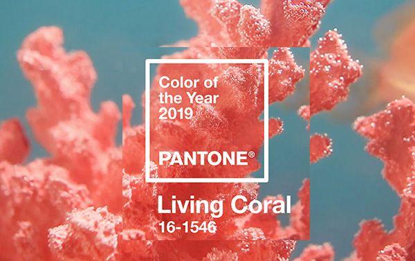 مرجانی زنده رنگ سال ۲۰۱۹ پنتون